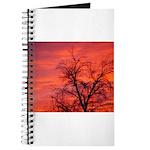 FireSky2 Journal