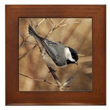 Springtime Chickadee Framed Tile