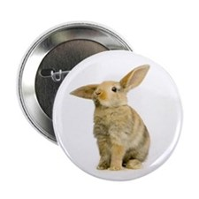 """Happy Easter - 2.25"""" Button"""