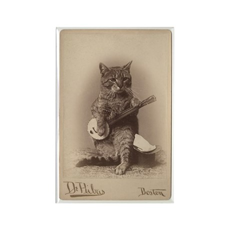 Cat Playing a Banjo Rectangle Magnet