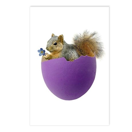 Squirrel in Purple Eggshell Postcards (Package of