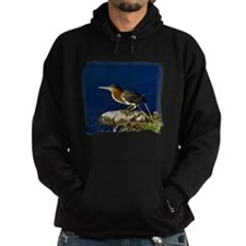 Green-backed Heron Hoodie