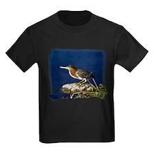 Green-backed Heron T