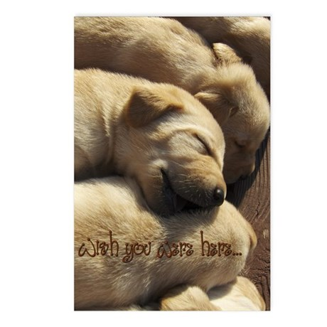 Wish You Were Here Postcards (Package of 8)