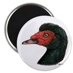 """Muscovy Duck Head Black 2.25"""" Magnet (10 pack"""