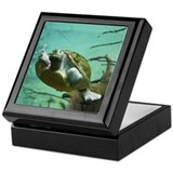 Turtle keepsake boxes Keepsake Boxes