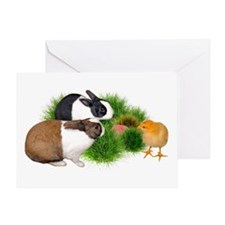 Dutch Bunnies with Chick Greeting Card
