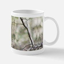 Munching Squirrel Mug