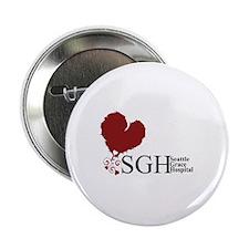 Seattle Grace Hospital 2.25