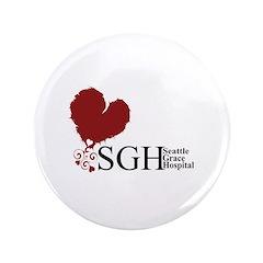 Seattle Grace Hospital 3.5