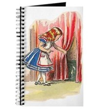 Alice FInds a Door Journal