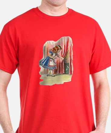 Alice FInds a Door T-Shirt