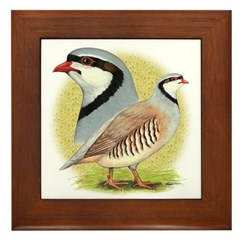 Partridge Chukar Framed Tile