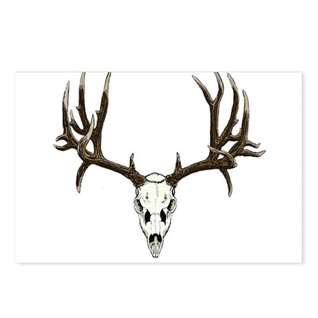 Deer skull Postcards (Package of 8)