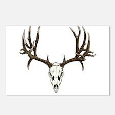 Deer skull Postcards (Package of 8)