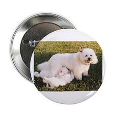 """Cute Dogs sale 2.25"""" Button"""