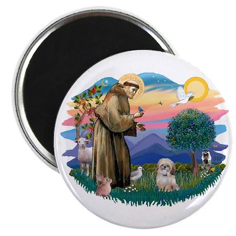 St Francis #2 / Shih Tzu. (P) Magnet