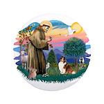 St. Francis #2 / Sheltie (sw) 3.5