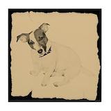 Jack russell terrier Drink Coasters
