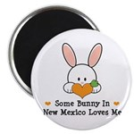 Some Bunny In New Mexico Magnet