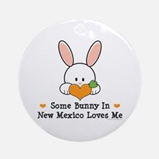 Some Bunny In New Mexico Ornament (Round)