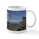 Desert View Mug