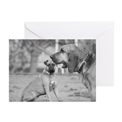 Boxer and Bloodhound Greeting Cards (Pk of 20)