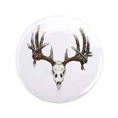 whitetail skull 3.5