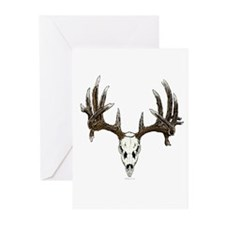 whitetail skull Greeting Cards (Pk of 10)