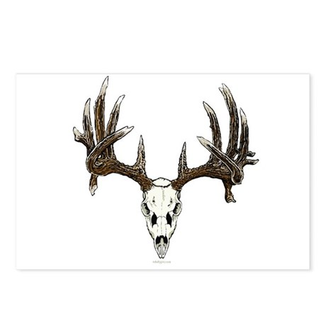 whitetail skull Postcards (Package of 8)