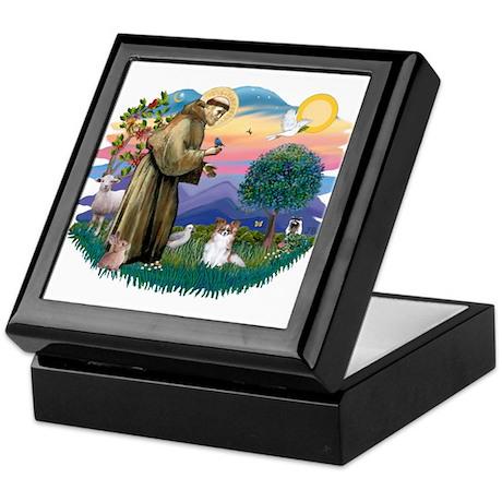 St. Francis #2 / Papillon (sw) Keepsake Box
