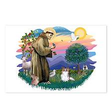 St. Francis #2 / Papillon (sw) Postcards (Package
