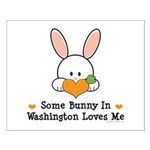 Some Bunny In Washington Small Poster