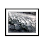 Life inside the Ice Framed Panel Print