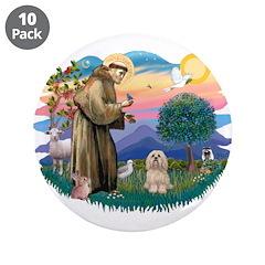 St Francis #2/ Lhasa Apso #9 3.5