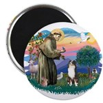 St Francis #2/ Aus Shep (tri) 2.25
