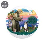 St Francis #2/ Aus Shep (tri) 3.5