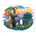 St Francis #2/ Aus Shep (tri) Small Poster