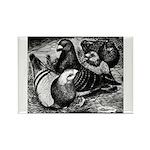 Giant Homer Pigeons Rectangle Magnet
