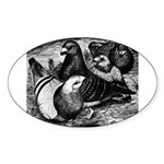 Giant Homer Pigeons Oval Sticker
