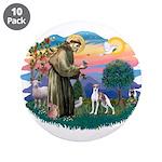 St. Francis #2 / Italian Greyhound 3.5