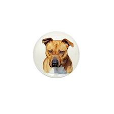 Pitbull Mini Button (10 pack)