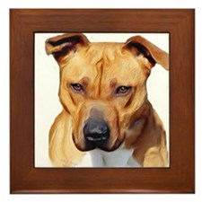 Pitbull Framed Tile