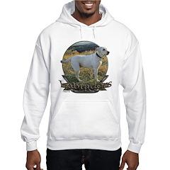 Labradors Hoodie