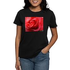 Rhapsody Rose Tee