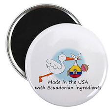 Stork Baby Ecuador USA Magnet