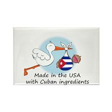 Stork Baby Cuba USA Rectangle Magnet