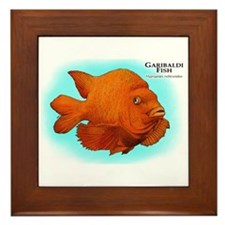 Garibaldi Fish Framed Tile