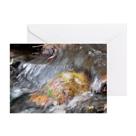 Resisting the Change of Time Greeting Cards (Pk of