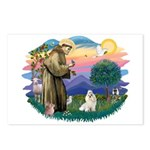 St Francis #2 / Havanese (w) Postcards (Package of